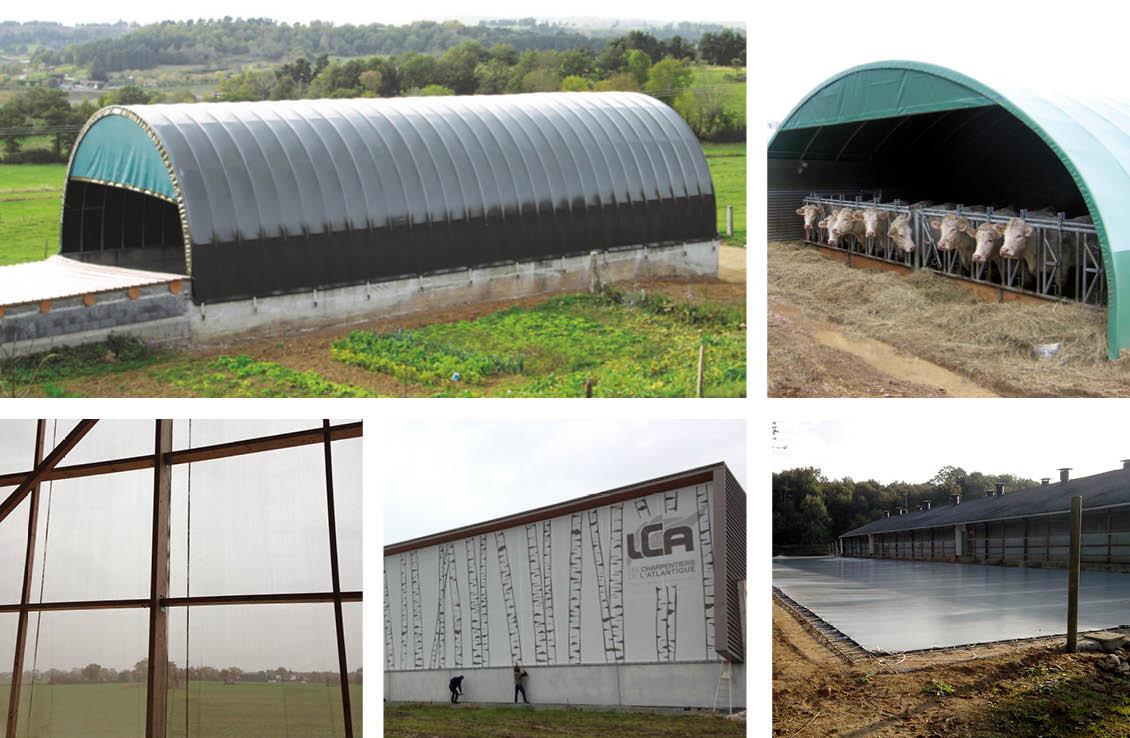 Mosaïque - Agriculture